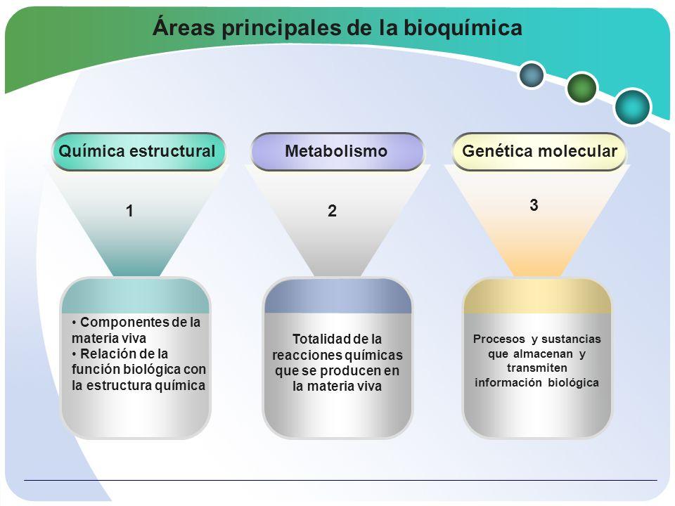 Áreas principales de la bioquímica