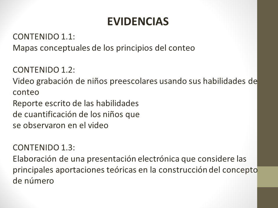 EVIDENCIAS CONTENIDO 1.1: