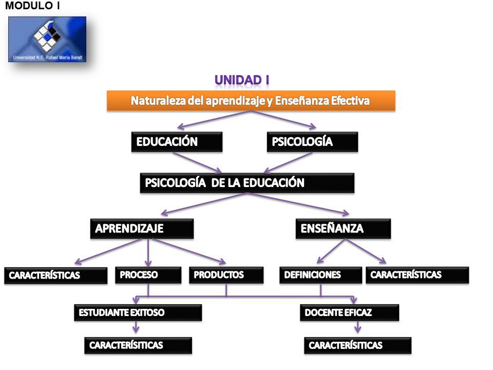 Naturaleza del aprendizaje y Enseñanza Efectiva