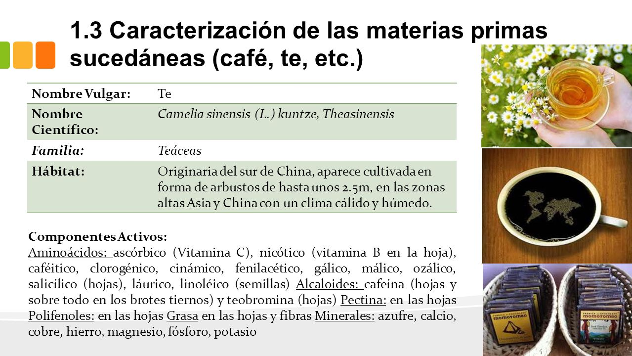 1.3 Caracterización de las materias primas sucedáneas (café, te, etc.)
