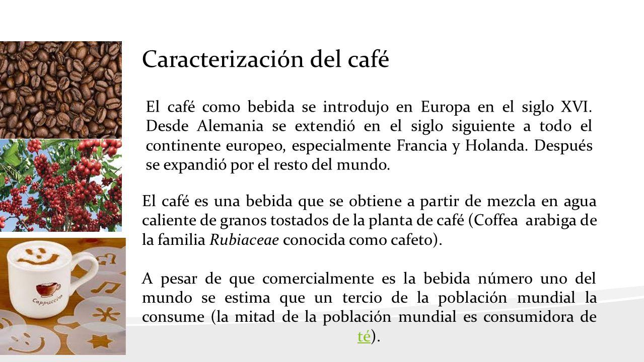 Caracterización del café