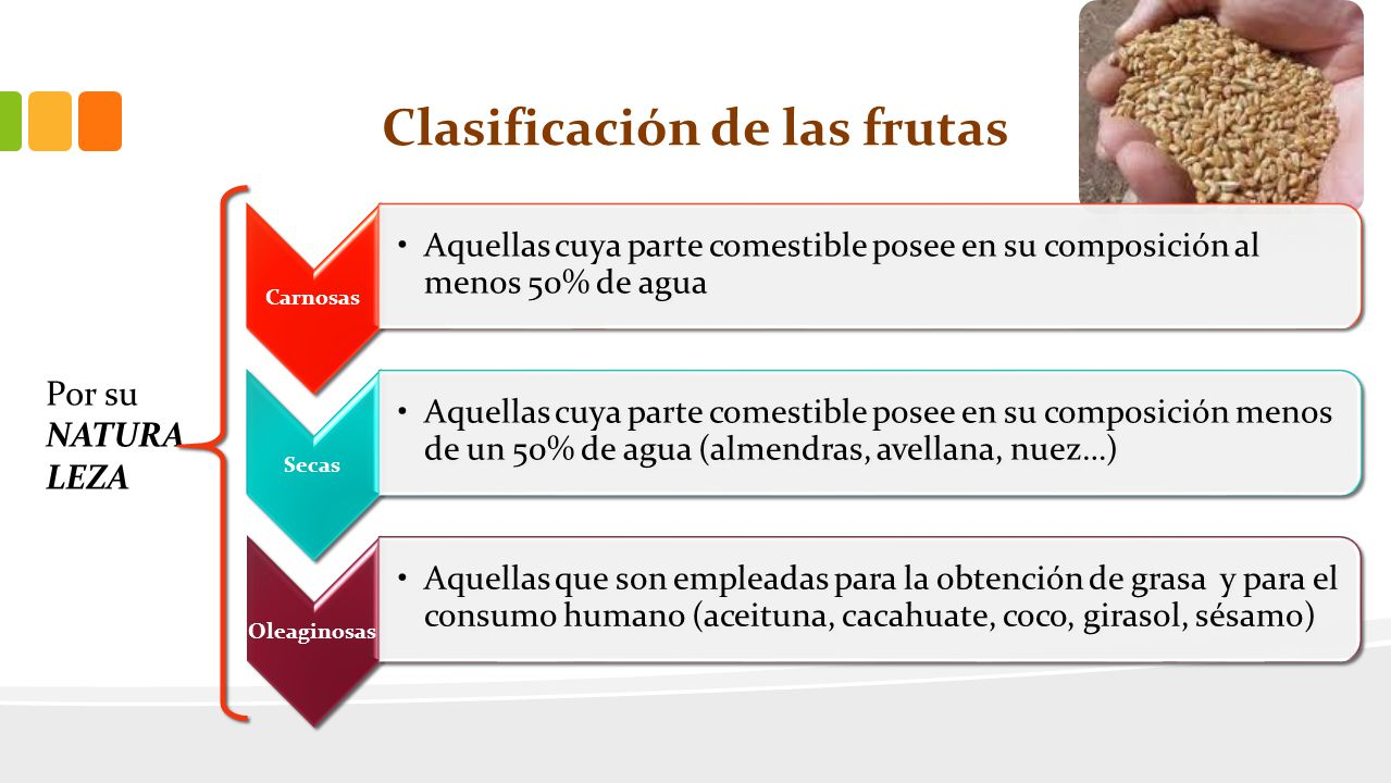 Clasificación de las frutas