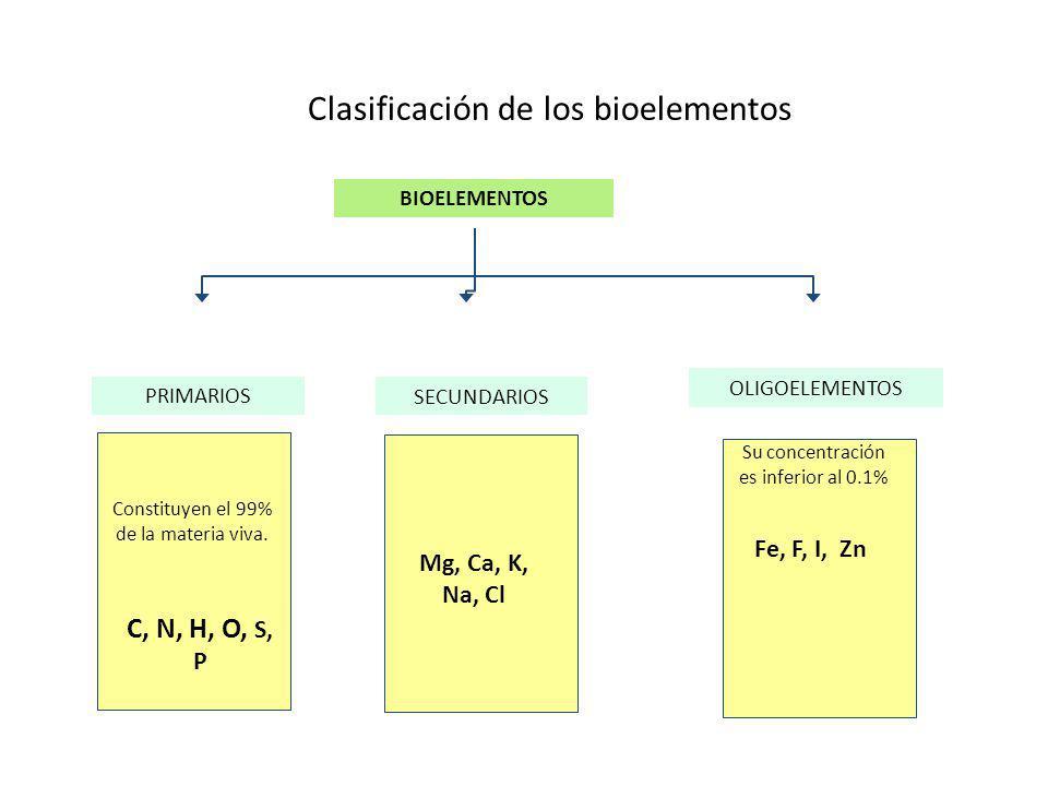 Clasificación de los bioelementos