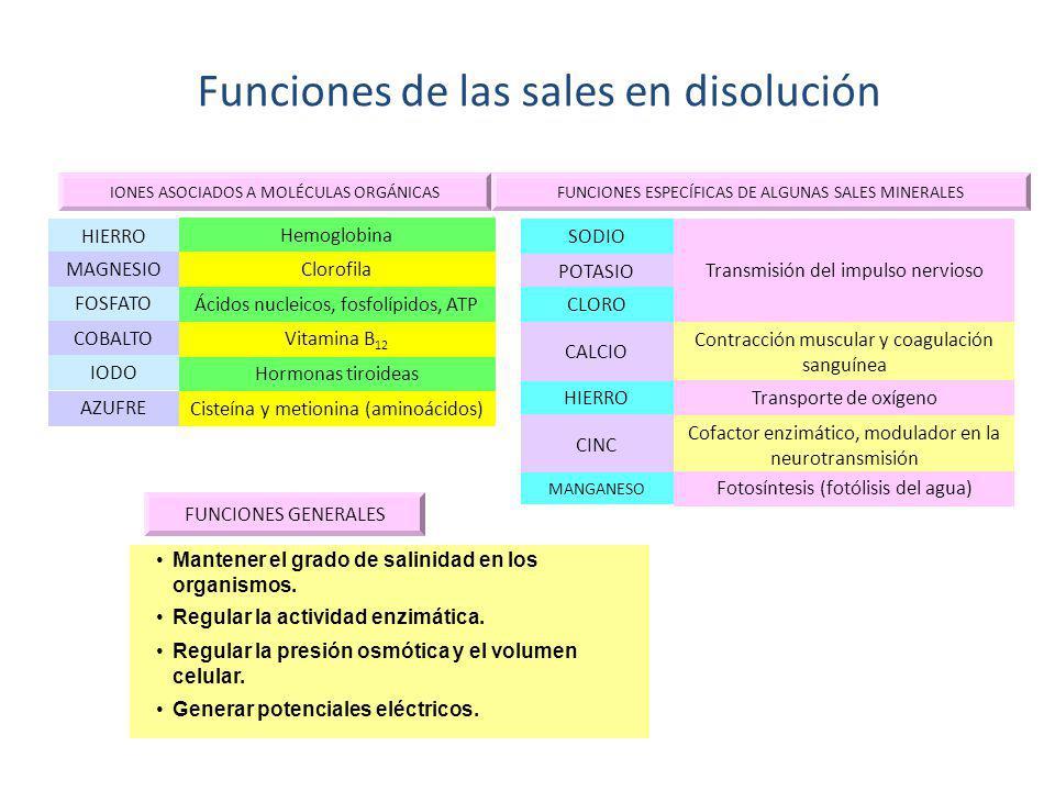 Funciones de las sales en disolución