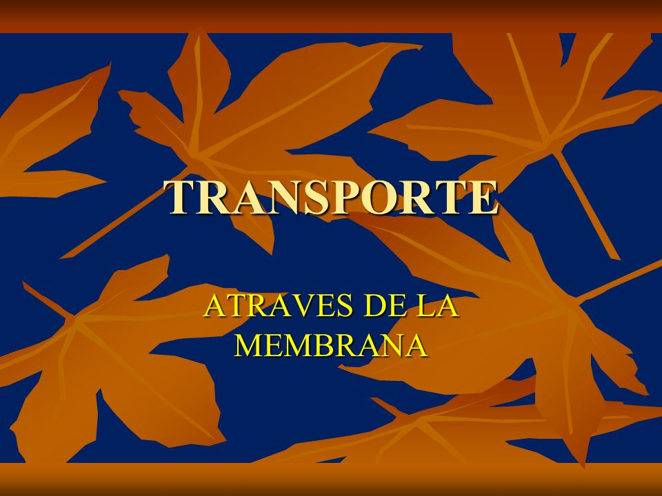 TRANSPORTE ATRAVES DE LA MEMBRANA