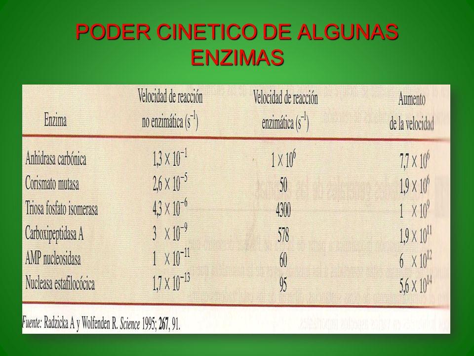 PODER CINETICO DE ALGUNAS ENZIMAS