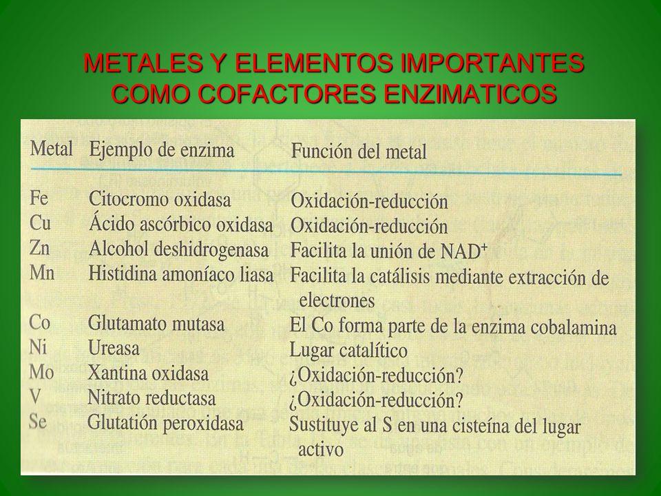 METALES Y ELEMENTOS IMPORTANTES COMO COFACTORES ENZIMATICOS