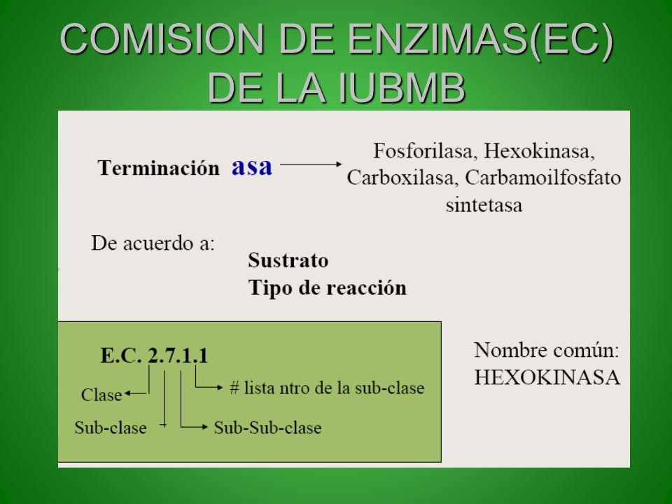 COMISION DE ENZIMAS(EC) DE LA IUBMB