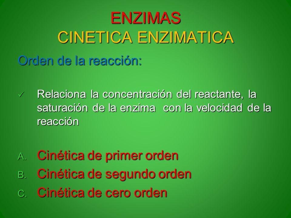 ENZIMAS CINETICA ENZIMATICA
