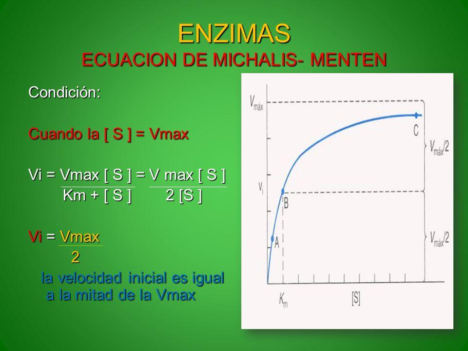 ENZIMAS ECUACION DE MICHALIS- MENTEN