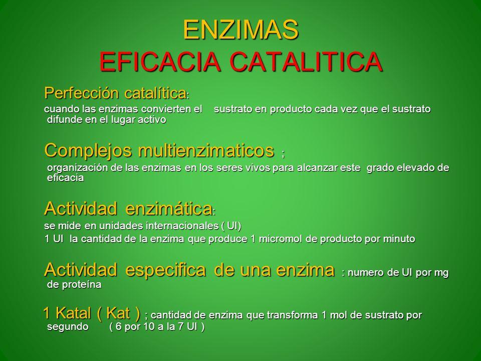 ENZIMAS EFICACIA CATALITICA