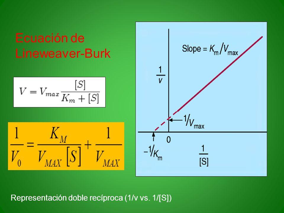 Ecuación de Lineweaver-Burk