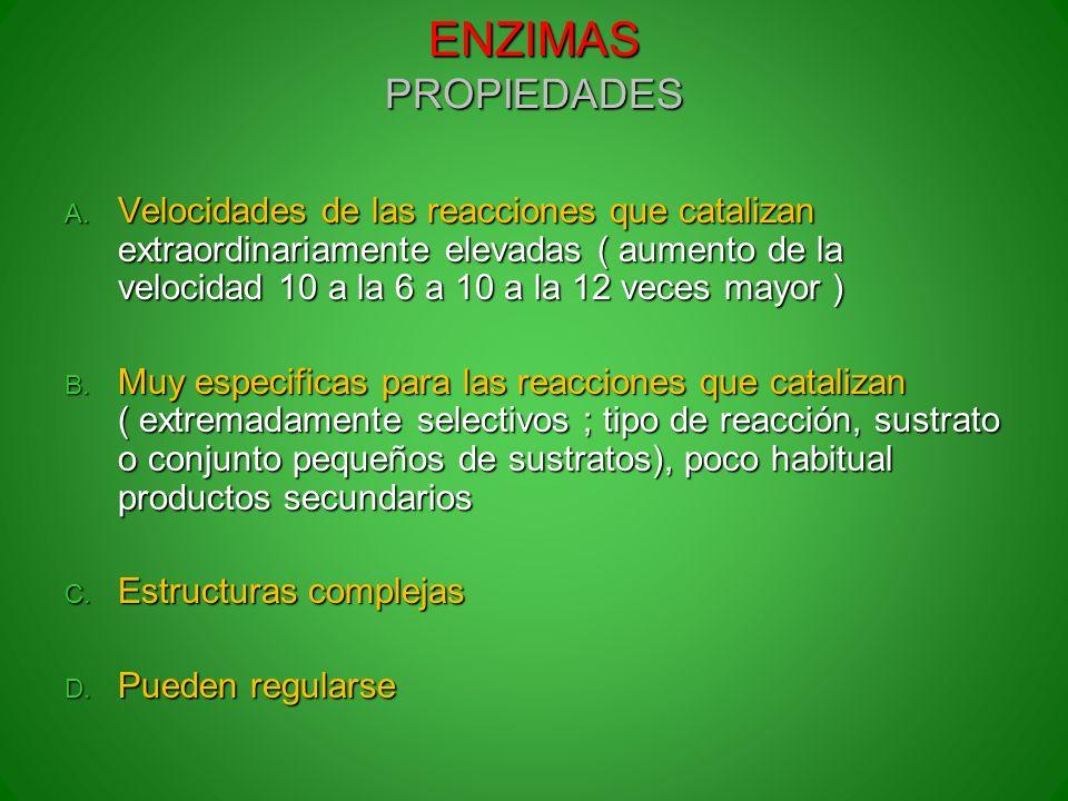 ENZIMAS PROPIEDADES