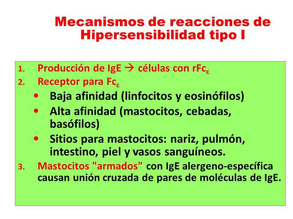 Mecanismos de reacciones de Hipersensibilidad tipo I
