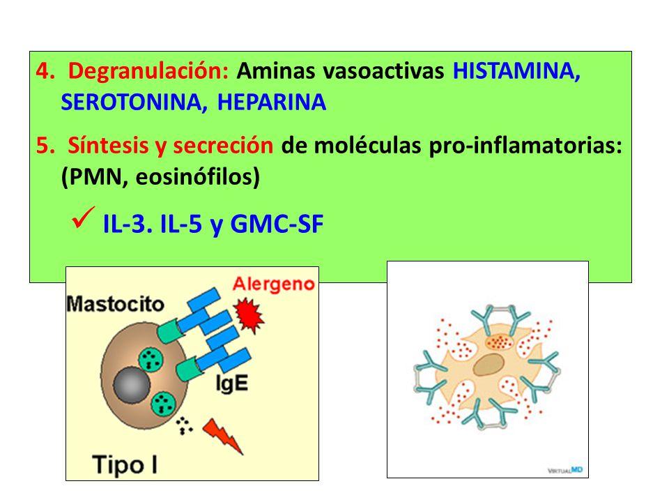 4. Degranulación: Aminas vasoactivas HISTAMINA, SEROTONINA, HEPARINA