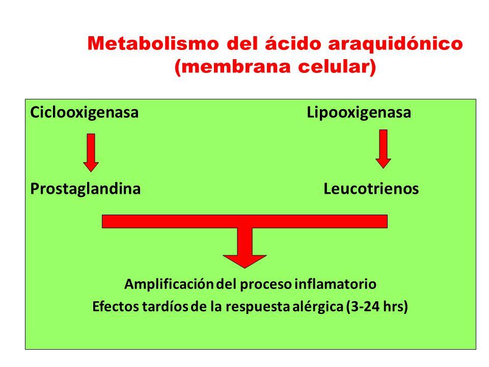 Metabolismo del ácido araquidónico (membrana celular)