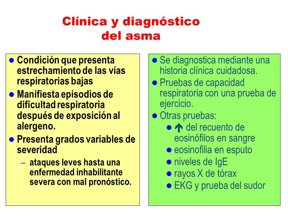 Clínica y diagnóstico del asma