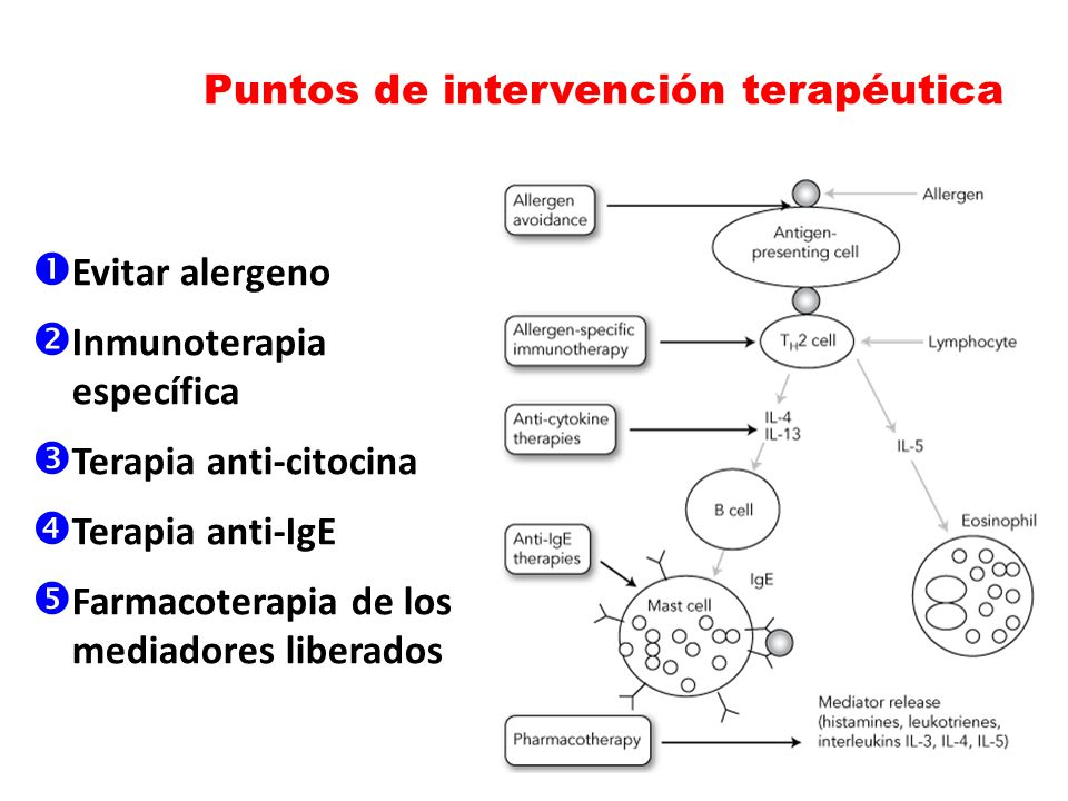 Puntos de intervención terapéutica