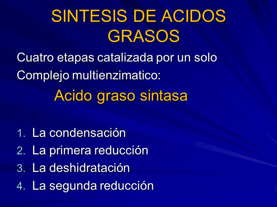 SINTESIS DE ACIDOS GRASOS