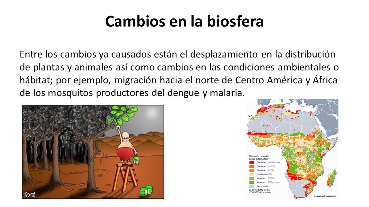 Cambios en la biosfera