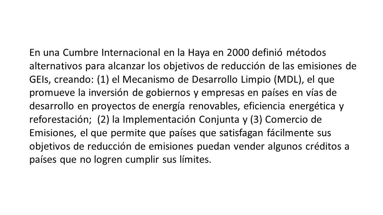 En una Cumbre Internacional en la Haya en 2000 definió métodos alternativos para alcanzar los objetivos de reducción de las emisiones de GEIs, creando: (1) el Mecanismo de Desarrollo Limpio (MDL), el que promueve la inversión de gobiernos y empresas en países en vías de desarrollo en proyectos de energía renovables, eficiencia energética y reforestación; (2) la Implementación Conjunta y (3) Comercio de Emisiones, el que permite que países que satisfagan fácilmente sus objetivos de reducción de emisiones puedan vender algunos créditos a países que no logren cumplir sus límites.