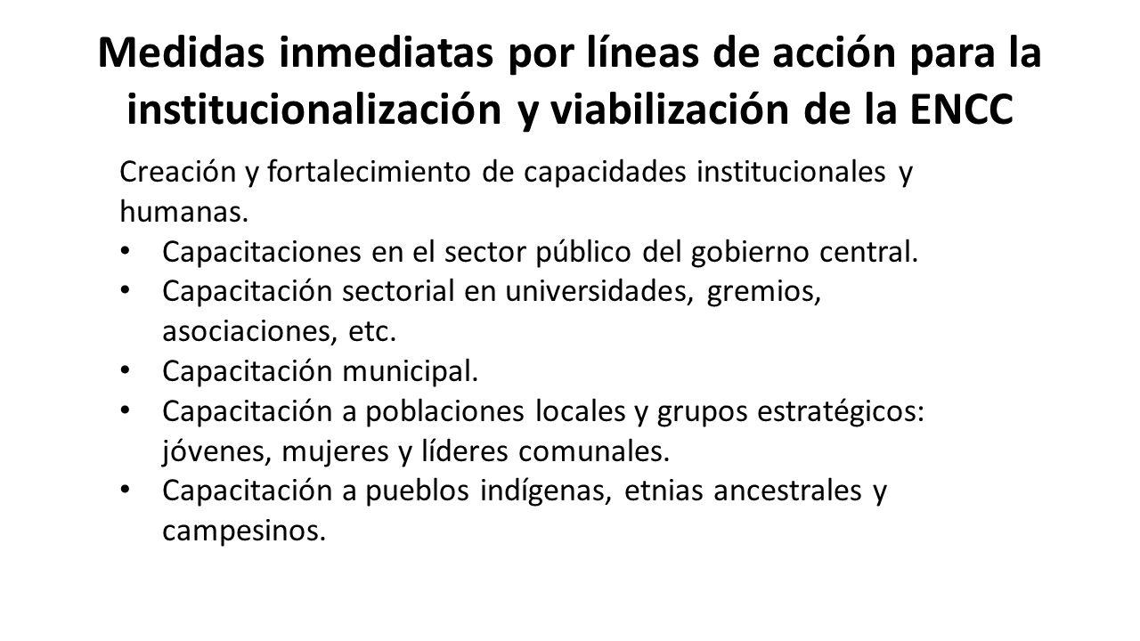Medidas inmediatas por líneas de acción para la institucionalización y viabilización de la ENCC