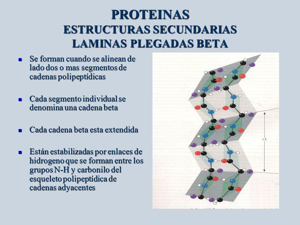 PROTEINAS ESTRUCTURAS SECUNDARIAS LAMINAS PLEGADAS BETA