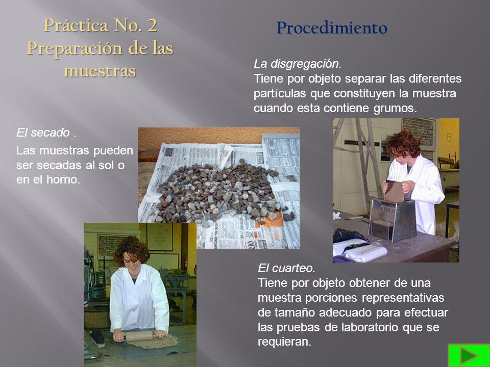 Práctica No. 2 Preparación de las muestras