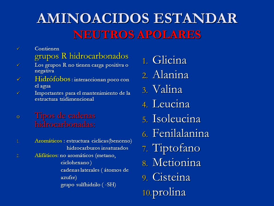 AMINOACIDOS ESTANDAR NEUTROS APOLARES