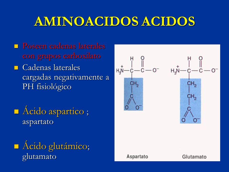 AMINOACIDOS ACIDOS Ácido aspartico ; aspartato