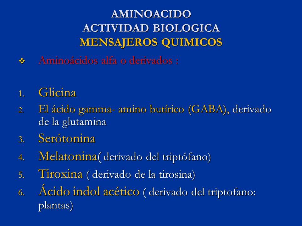 AMINOACIDO ACTIVIDAD BIOLOGICA MENSAJEROS QUIMICOS