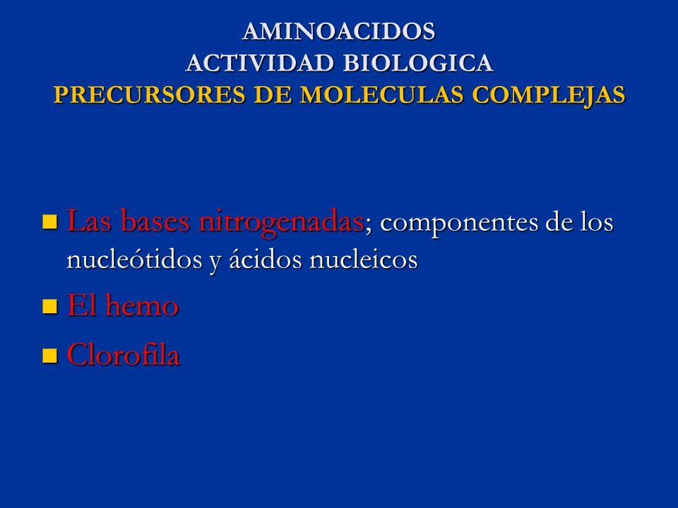 AMINOACIDOS ACTIVIDAD BIOLOGICA PRECURSORES DE MOLECULAS COMPLEJAS