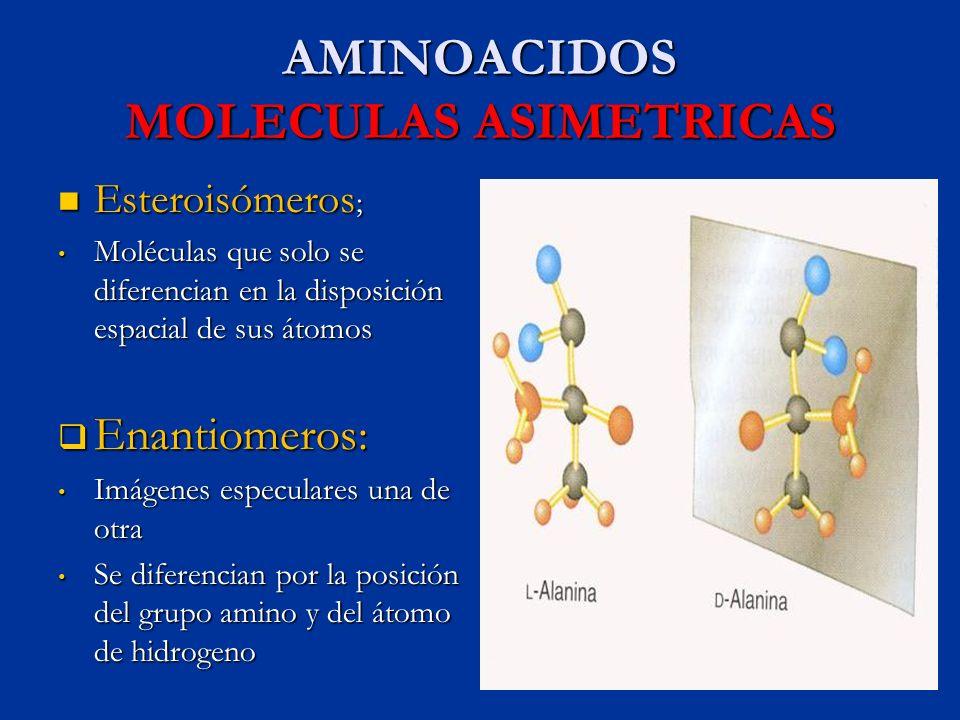 AMINOACIDOS MOLECULAS ASIMETRICAS