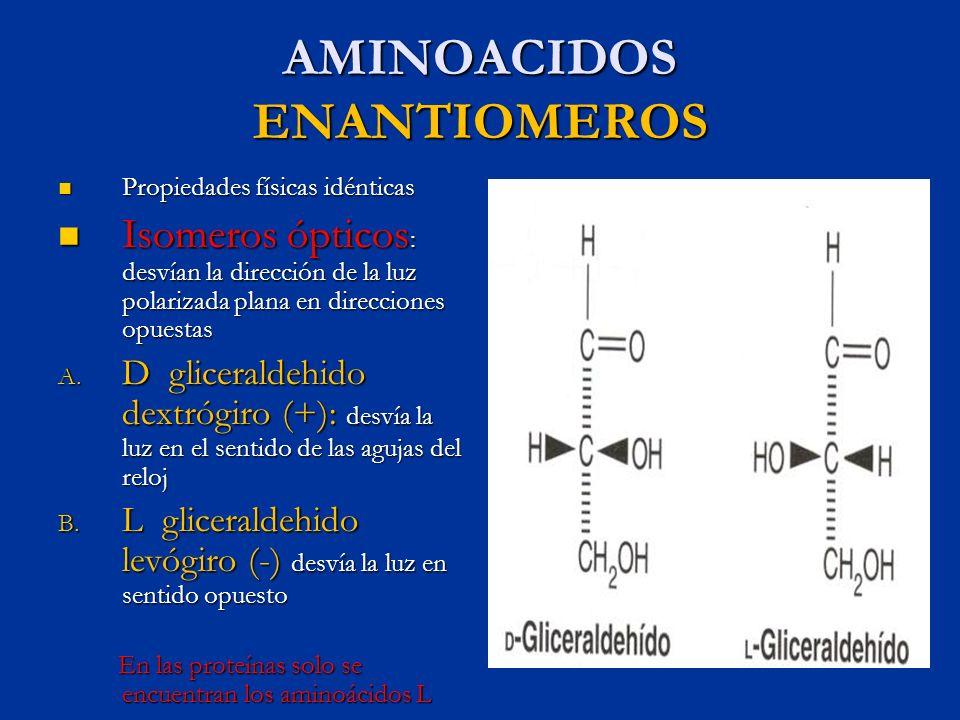 AMINOACIDOS ENANTIOMEROS