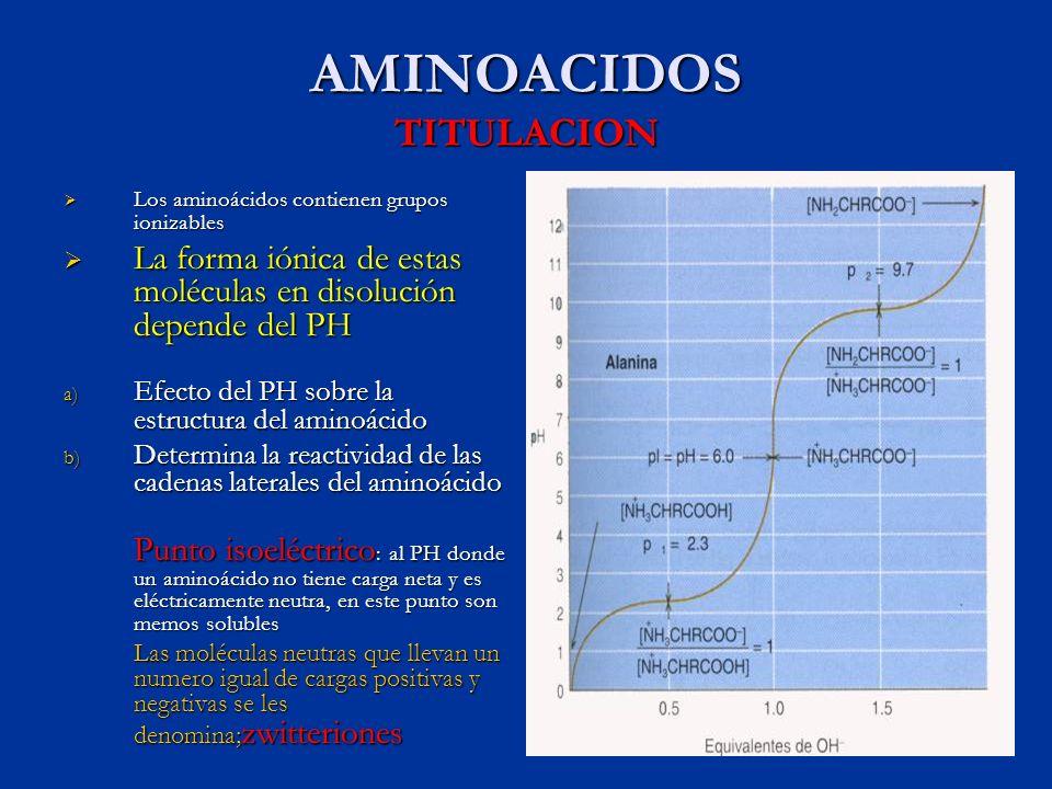 AMINOACIDOS TITULACION
