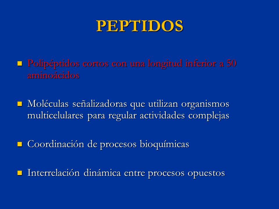 PEPTIDOS Polipéptidos cortos con una longitud inferior a 50 aminoácidos.