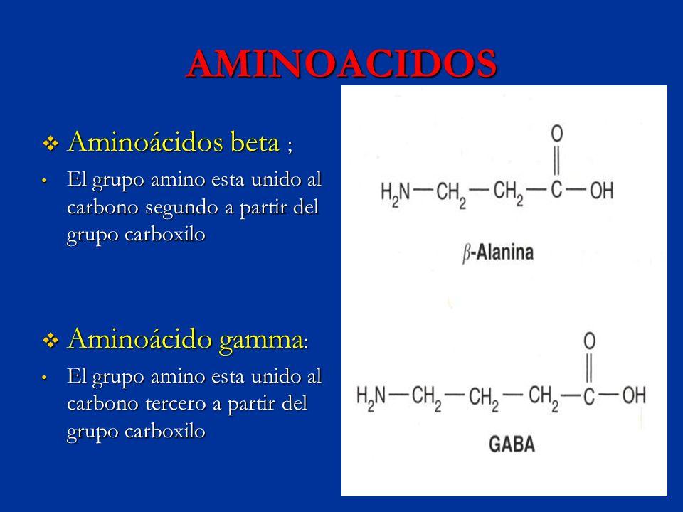 AMINOACIDOS Aminoácidos beta ; Aminoácido gamma: