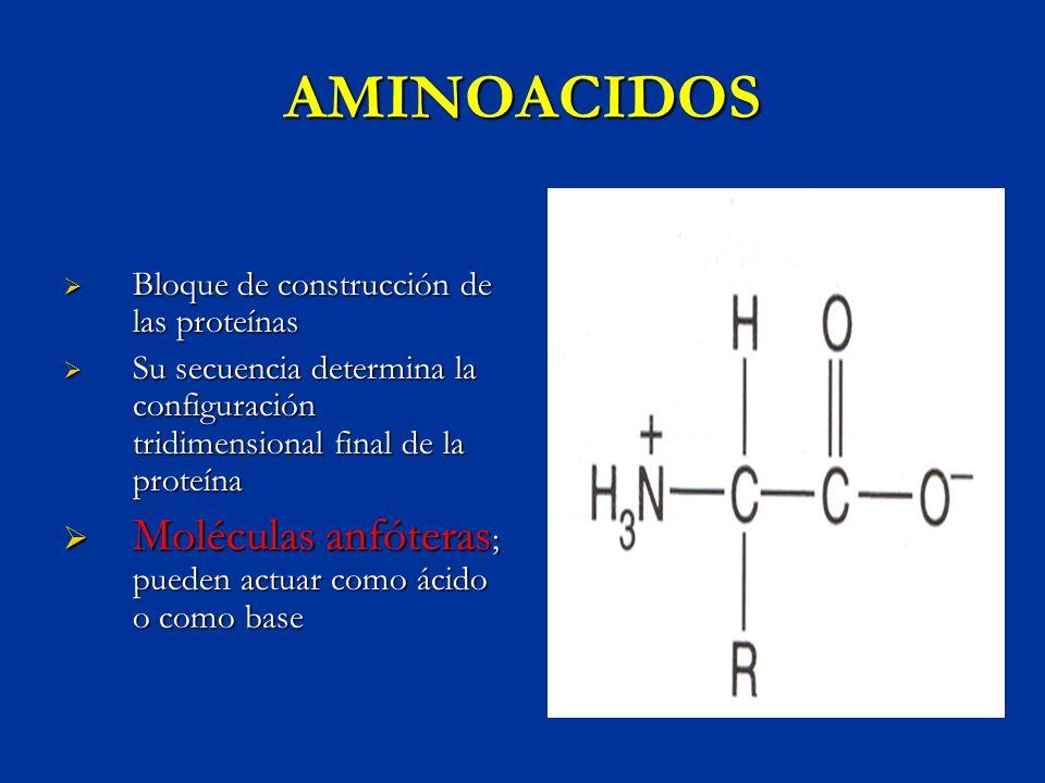 AMINOACIDOS Moléculas anfóteras; pueden actuar como ácido o como base