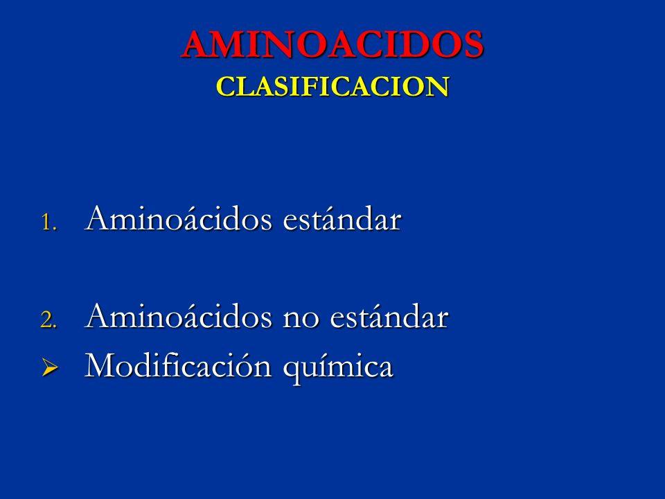 AMINOACIDOS CLASIFICACION
