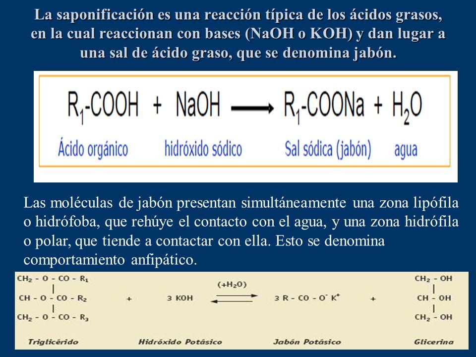 La saponificación es una reacción típica de los ácidos grasos, en la cual reaccionan con bases (NaOH o KOH) y dan lugar a una sal de ácido graso, que se denomina jabón.