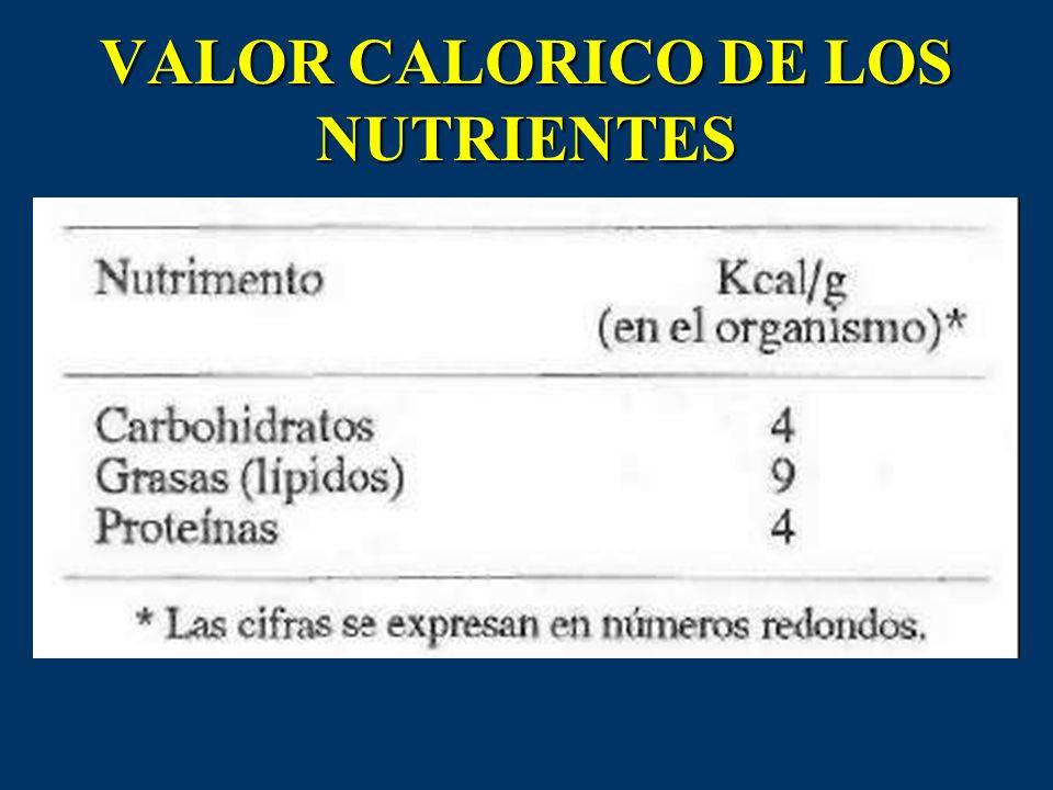 VALOR CALORICO DE LOS NUTRIENTES
