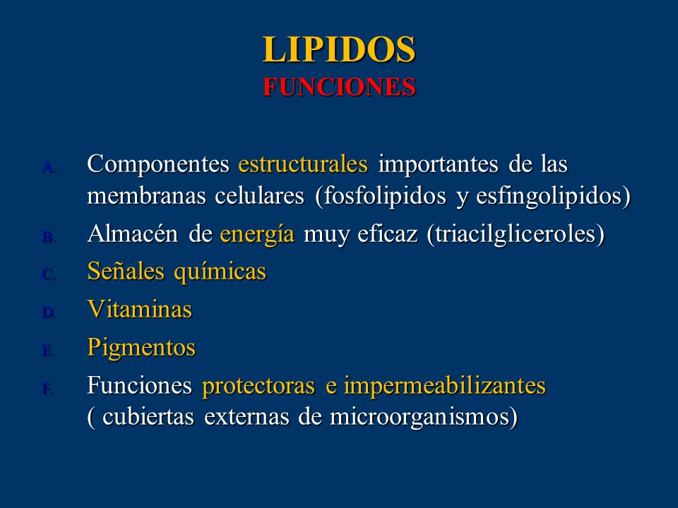 LIPIDOS FUNCIONES Componentes estructurales importantes de las membranas celulares (fosfolipidos y esfingolipidos)