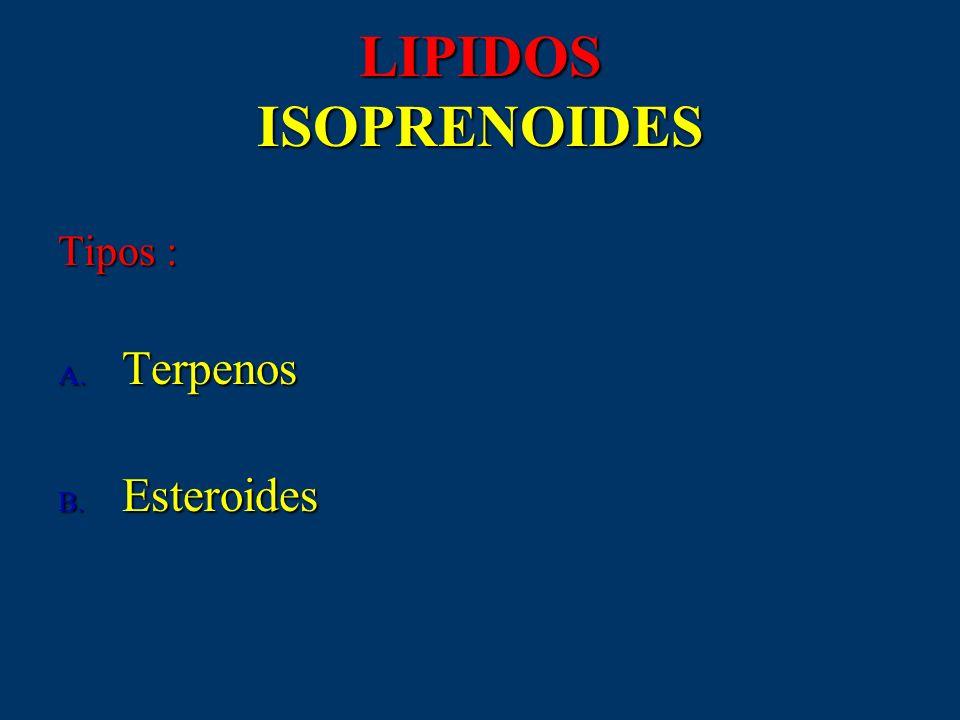 LIPIDOS ISOPRENOIDES Tipos : Terpenos Esteroides