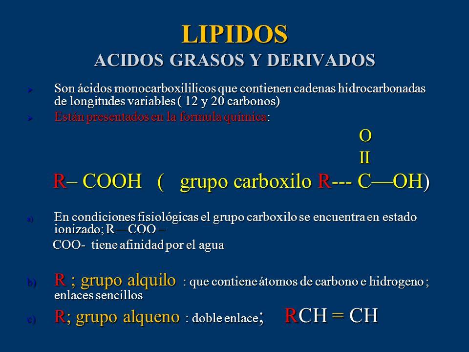 LIPIDOS ACIDOS GRASOS Y DERIVADOS