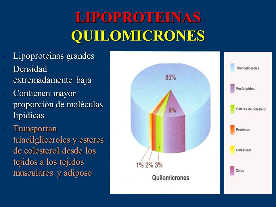 LIPOPROTEINAS QUILOMICRONES