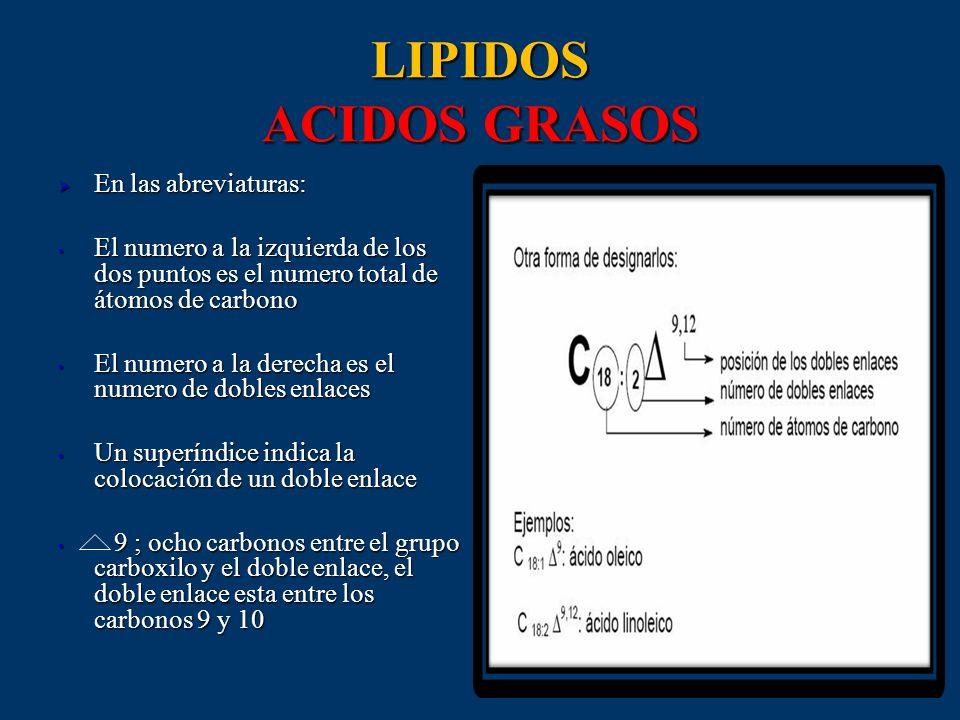 LIPIDOS ACIDOS GRASOS En las abreviaturas: