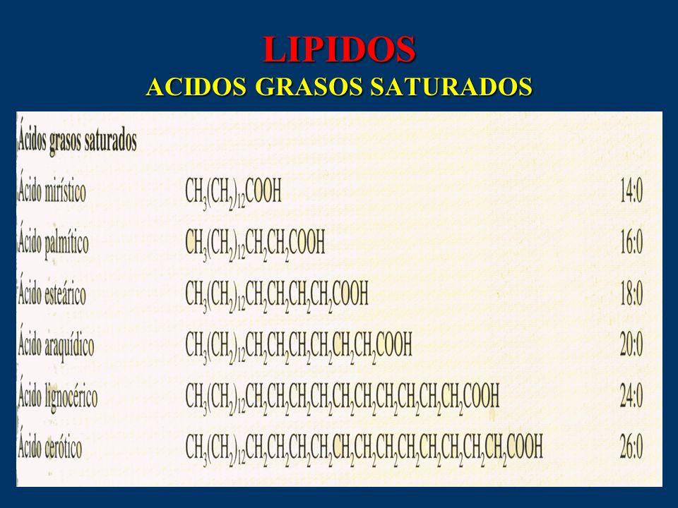LIPIDOS ACIDOS GRASOS SATURADOS