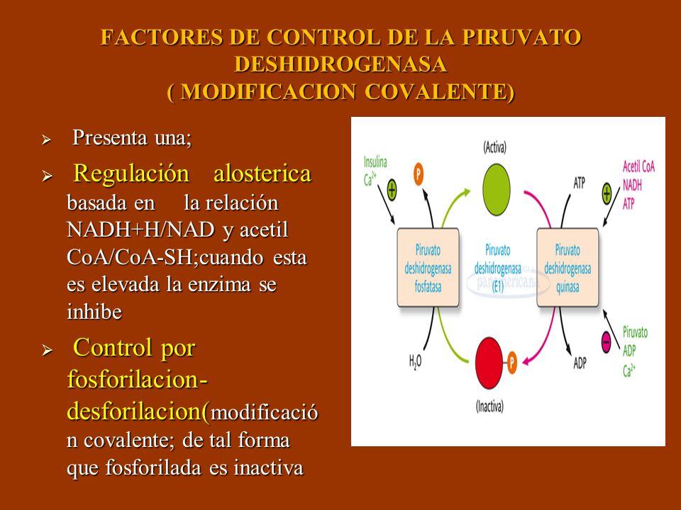 FACTORES DE CONTROL DE LA PIRUVATO DESHIDROGENASA ( MODIFICACION COVALENTE)