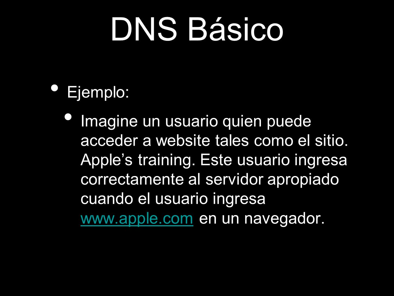 DNS Básico Ejemplo: