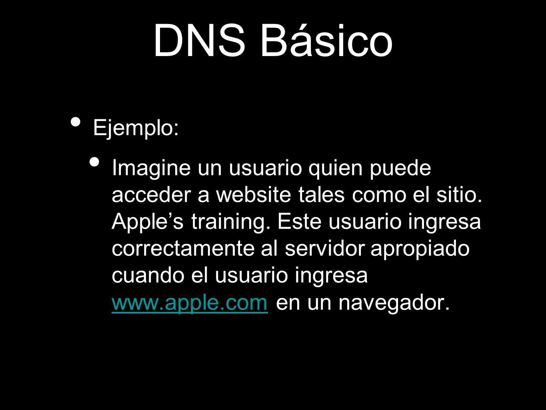DNS BásicoEjemplo: